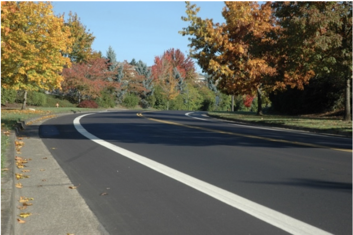 Paved road lined with trees.