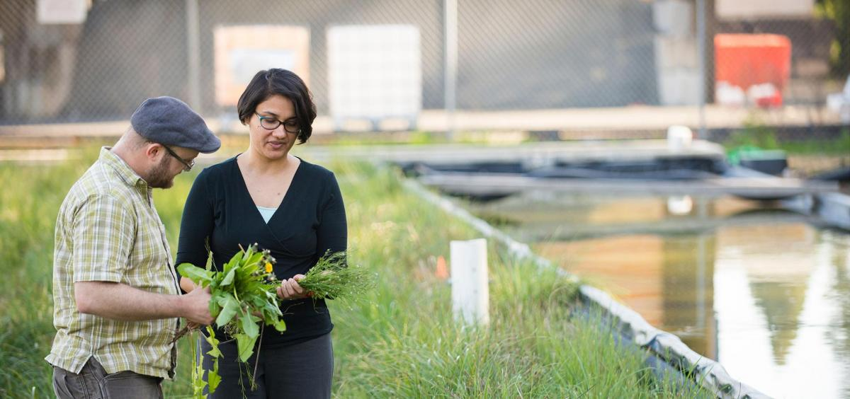 Principal Investigator Meghna Babbar-Sebens, assistant professor in water resources engineering and the Eric H.I. and Janice Hoffman Faculty Scholar.